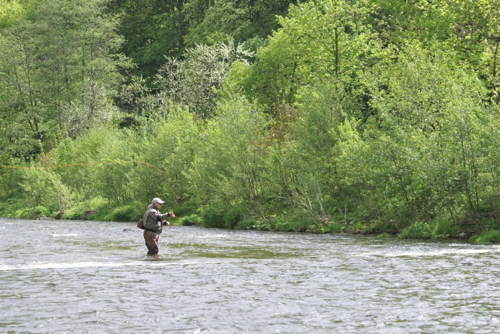 River Upa Czech republic Flyfishing